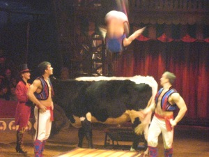 Acrobat jumping over the cow