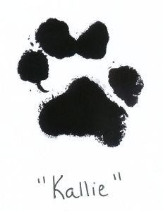 Kallie's paw