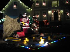 Santa at the duck pond