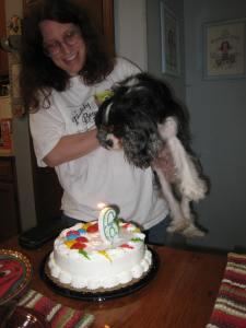 Hey, cake!